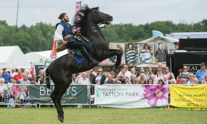 Royal Cheshire Atkinson Horses Bella Article